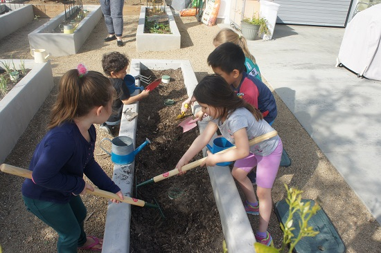Kids digging to add new plants